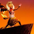 מחזמר - מלך האריות